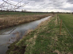 Canalised Welland at Ashlet pre-project